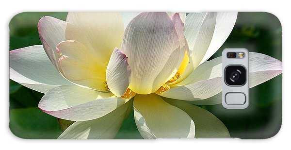 Lotus Beauty--disheveled Dl061 Galaxy Case