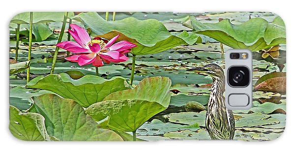 Lotus Blossom And Heron Galaxy Case by HH Photography of Florida