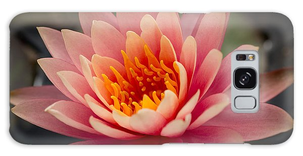 Lotus Flower Galaxy Case