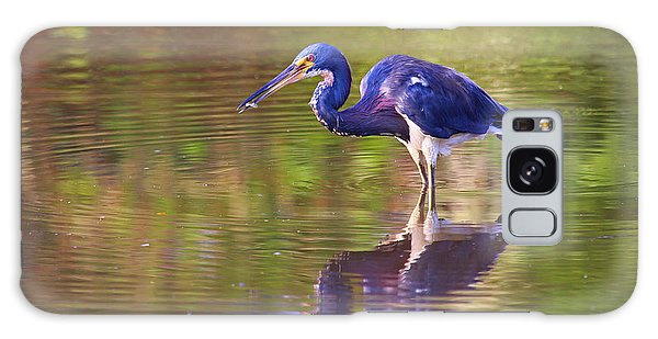 Louisiana Heron Galaxy Case