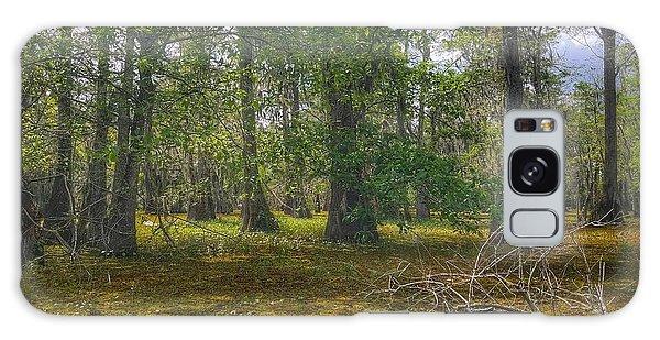 Louisiana Swamp Galaxy Case