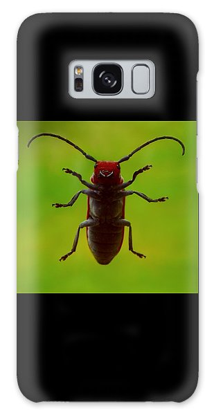 Love Bug Galaxy Case by Danielle R T Haney