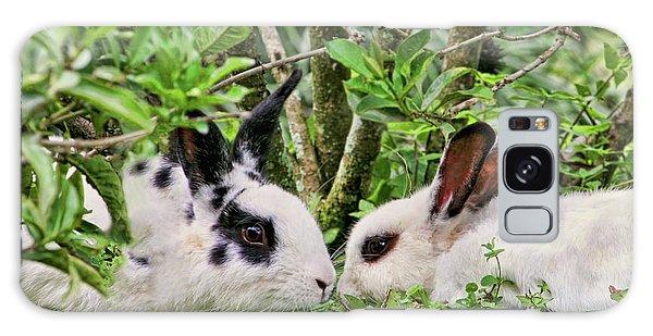 Love Bunnies In Costa Rica Galaxy Case