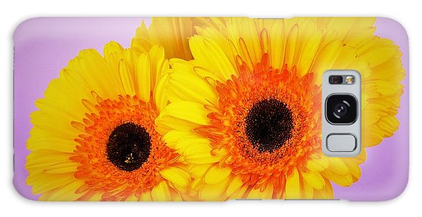 Lovely And Beautiful - Gerbera Daisies Galaxy Case