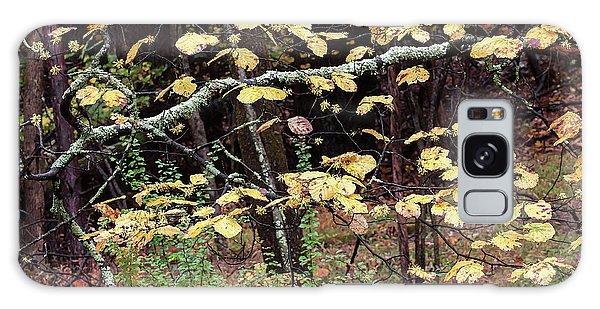 Lovely Autumn Witch Hazel -   Galaxy Case
