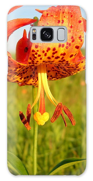 Lovely Orange Spotted Tiger Lily Galaxy Case by Kent Lorentzen