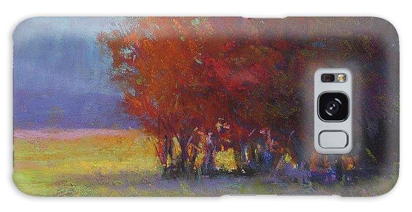 Lower Farm Field Galaxy Case by Susan Williamson