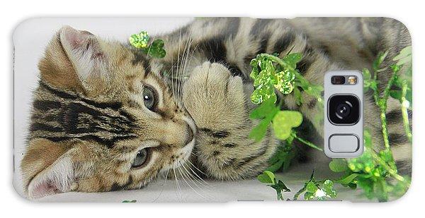 Lucky Kitten Galaxy Case by Shoal Hollingsworth