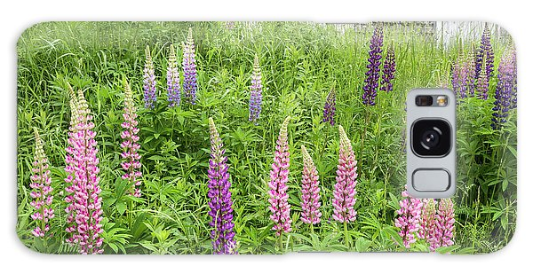 Galaxy Case featuring the photograph Lupine Cones And Weathered Shakes by Expressive Landscapes Fine Art Photography by Thom