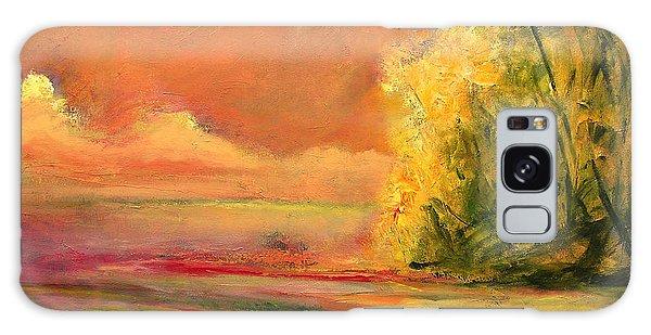 Luminous Sunset 2-16-06 Julianne Felton Galaxy Case