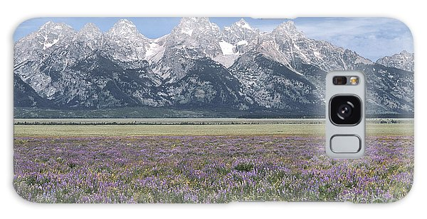 Lupine And Grand Tetons Galaxy Case by Sandra Bronstein