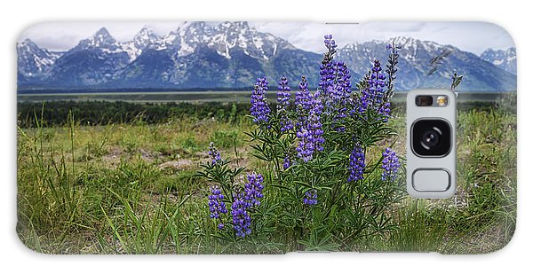Teton Galaxy Case - Lupine Beauty by Chad Dutson