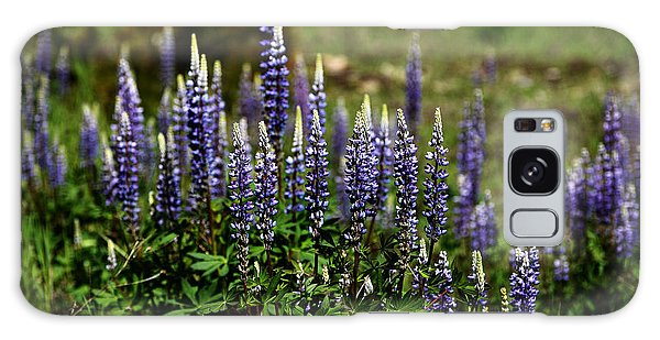Lupine In Montana 2 Galaxy Case