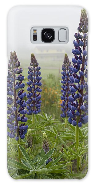 Lupine In The Fog Galaxy Case