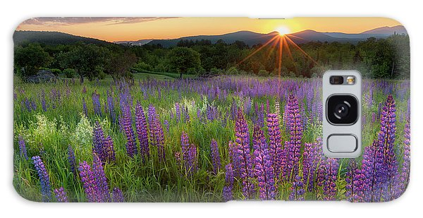 Galaxy Case featuring the photograph Lupine Lumination by Bill Wakeley