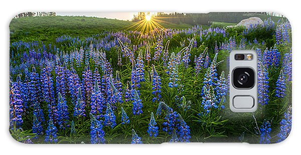 Lupine Meadow Galaxy Case