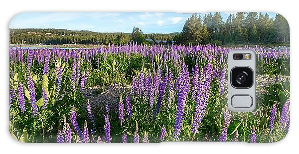 Lupines At Lake Tahoe Galaxy Case