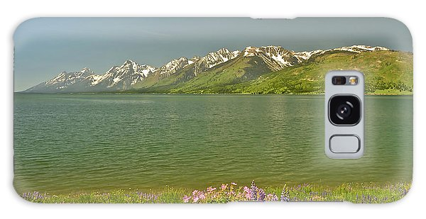 Lupines In The Tetons Galaxy Case