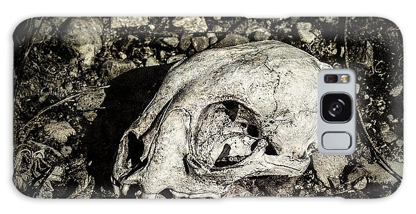 Lynx Skull Galaxy Case
