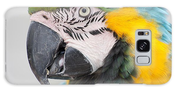 Galaxy Case - Macaw Head Plume Beauty by Iordanis Pallikaras