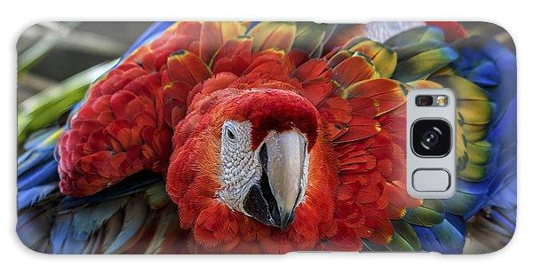 Macaw Galaxy Case - Macaw Parrot by Mitch Shindelbower