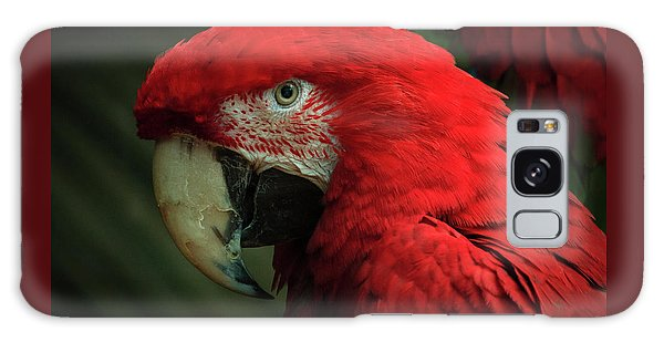 Macaw Portrait Galaxy Case by Joni Eskridge