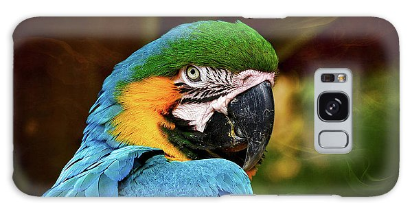 Macaw Portrait Galaxy Case by Kathy Baccari
