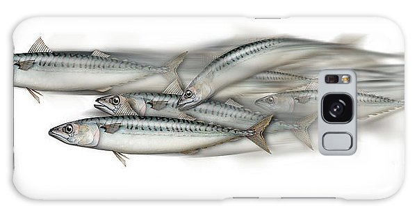 Mackerel School Of Fish - Scomber - Nautical Art - Seafood Art - Marine Art -game Fish Galaxy Case