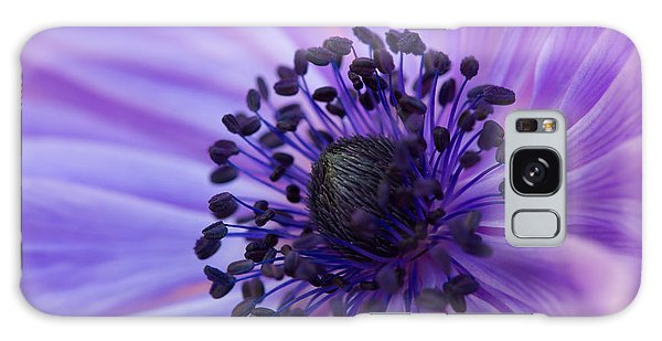 Macro Of Lavender Purple Anemone Galaxy Case