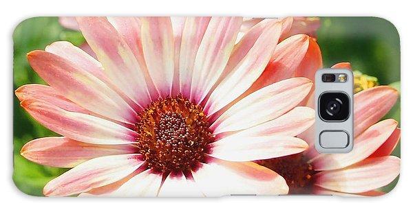 Macro Pink Cinnamon Tradewind Flower In The Garden Galaxy Case by Amy McDaniel