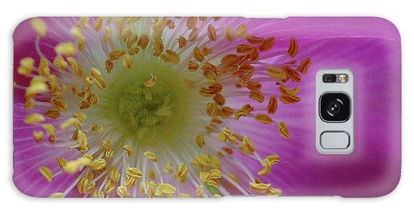 Macro Rosehip Bloom Galaxy Case