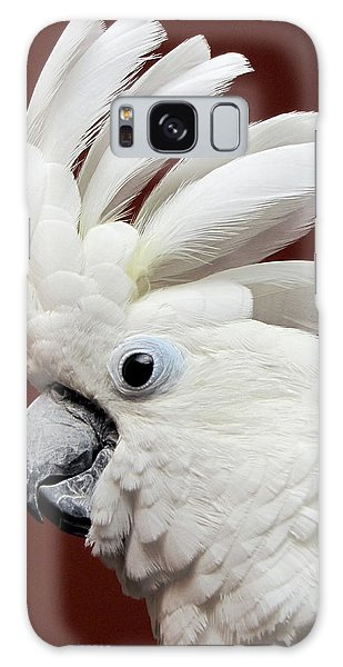 Maggie The Umbrella Cockatoo Galaxy Case