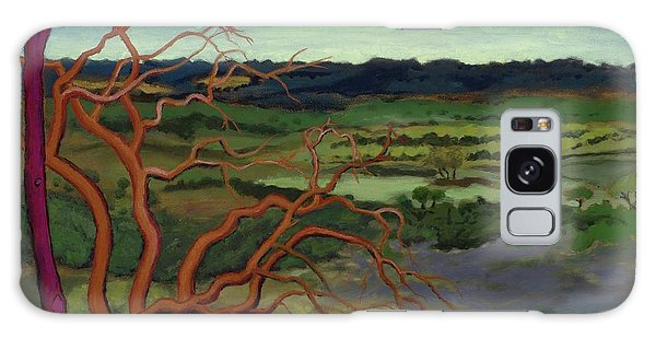 Magic Trees Of Wimberley Galaxy Case