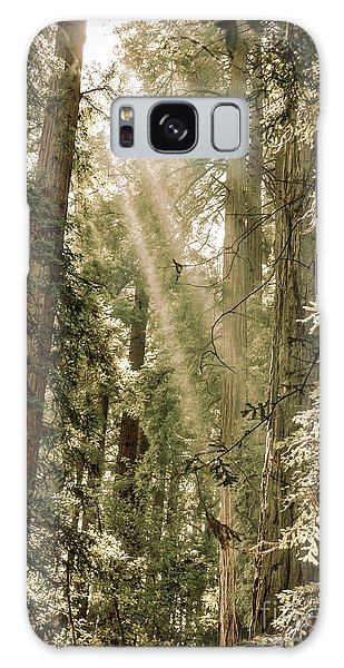 Magical Forest 2 Galaxy Case