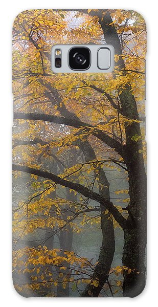 Magical Forest Blue Ridge Parkway Galaxy Case