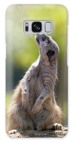 Meerkat Galaxy S8 Case - Magical Meerkat by Jane Rix