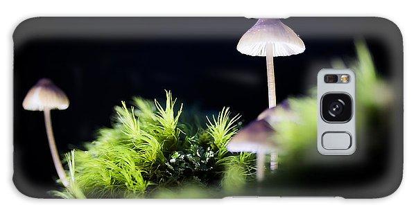 Magical World Of Mushrooms Galaxy Case