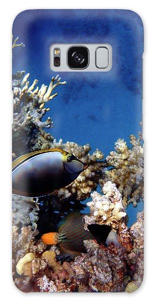 Magnificent Red Sea World Galaxy Case
