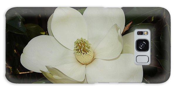Galaxy Case - Magnolia Blossom 5 by Megan Cohen