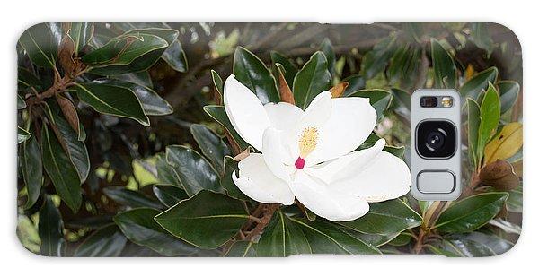 Magnolia Blossom Galaxy Case by Linda Geiger