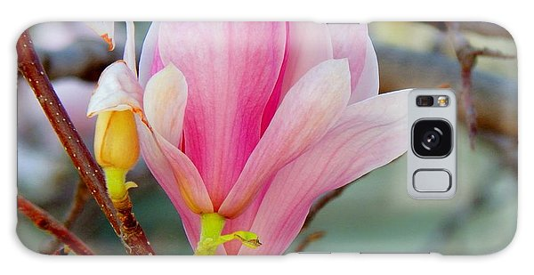 Magnolia Blossoms Galaxy Case