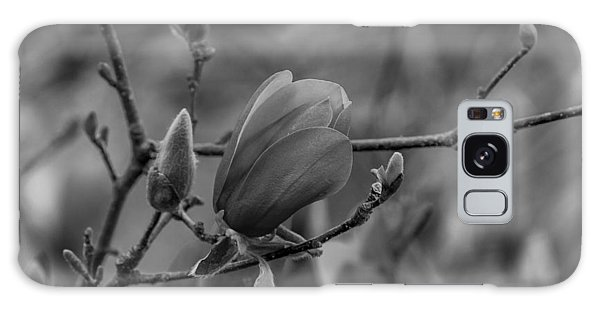 Magnolia Bw Blooms Buds Branches Galaxy Case