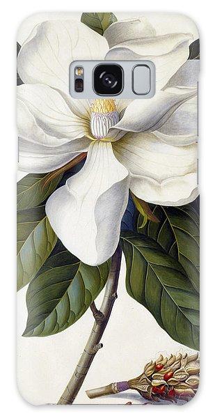 Bloom Galaxy Case - Magnolia Grandiflora by Georg Dionysius Ehret