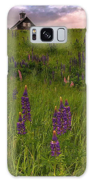 Maine Lupines And Home After Rain And Storm Galaxy Case