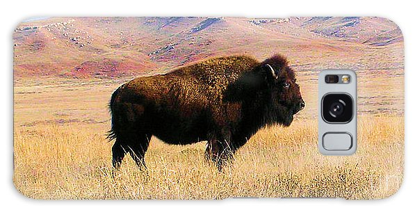Majestic Buffalo In Kansas Galaxy Case by Cheryl Poland