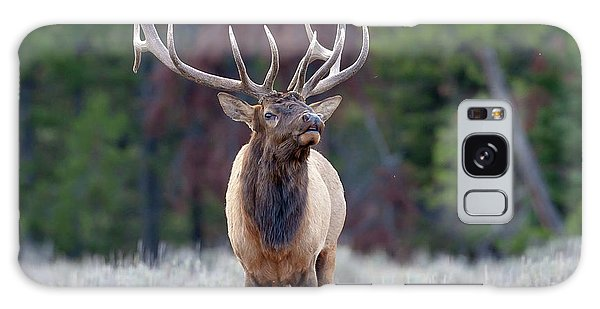 Majestic Bull Elk Galaxy Case