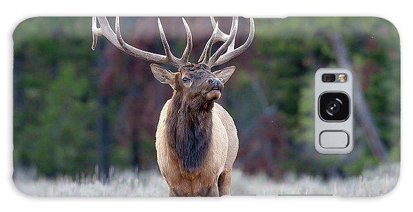 Majestic Bull Elk Galaxy Case by Jack Bell