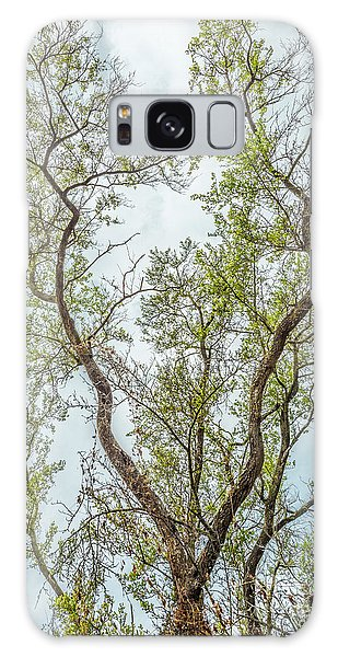 Majestic Mountain Mahogany Galaxy Case by Alexander Kunz