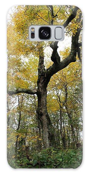 Majestic Tree Galaxy Case