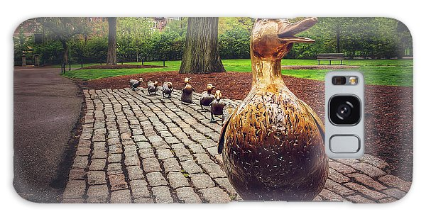 Make Way For Ducklings In Boston  Galaxy Case